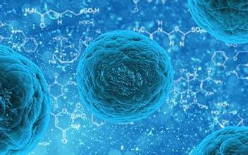 Stem Cells Deemed Safe for ALS Patients