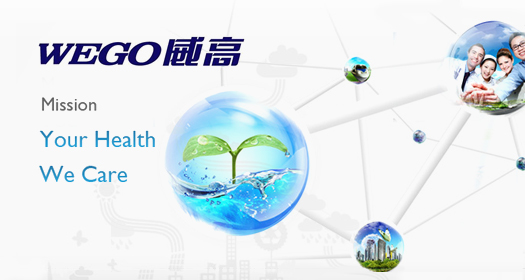 Shandong Weigao Group Medical Polymer Company Limited