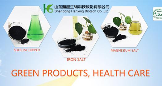 Shandong Hanxing Biotech Co.,Ltd.