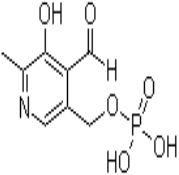 phosphopyridoxal