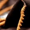 Cordyceps Militaris and Cordycepin Extract: Real or Fake?