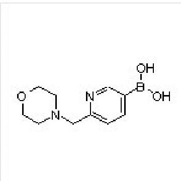 6-(Morpholinomethyl)pyridine-3-boronic Acid