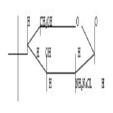 Glucosamine Sulfate Sodium Chloride