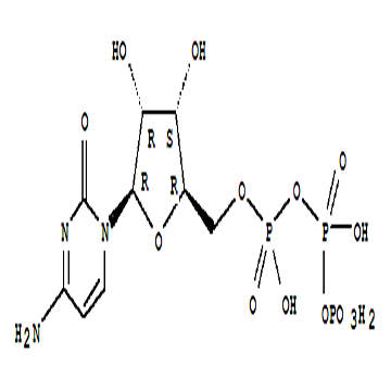 Cytidine5'-(tetrahydrogen triphosphate)