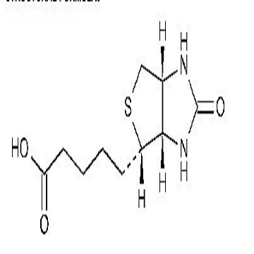 Biotin,D-Biotin,Vitamin H