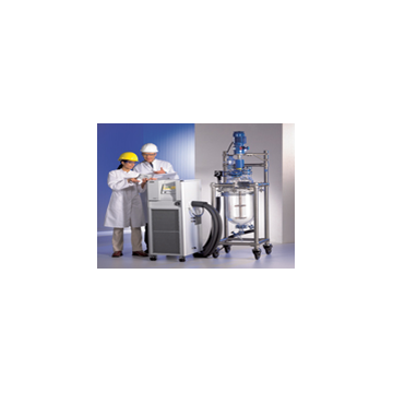 The reaction kettle special processes - constant temperature system