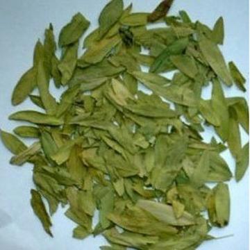 Cassia angustifolia, Cassia senna