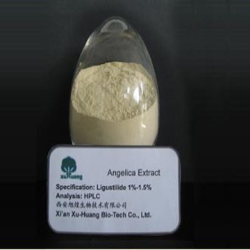 Angelica sinensis