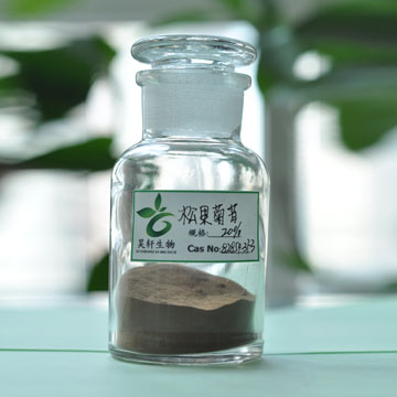 100% Natural cistanche extract Phenylethanoid glycosides polyphenol /Acteoside/Verbascoside5%-10%/Ec
