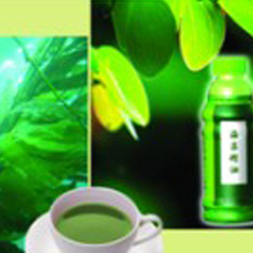 Seaweed Extract Oil