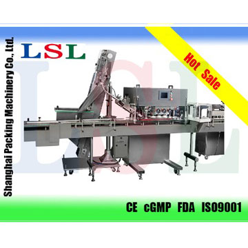 XGJ-120 Capping Machine