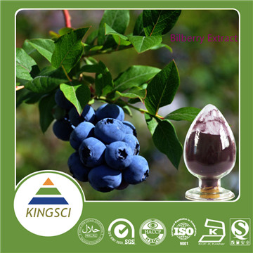 Billberry extract