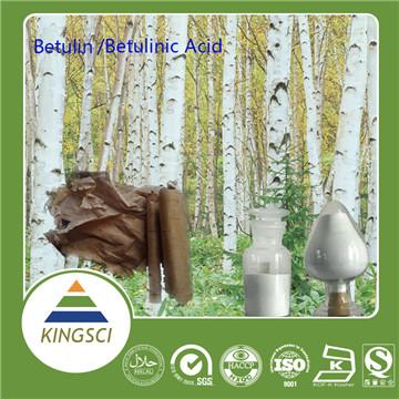 Birch Bark extract Betulin