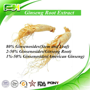 Natural Ginseng Leaf/Stem/Root Extract
