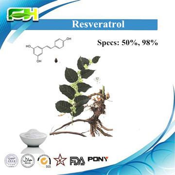 Natural Herbal Extract Raw Material Resveratrol