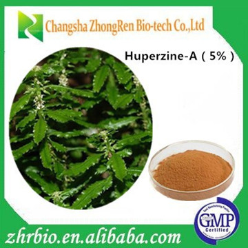 GMP Manufacturer Supply High Quality Huperzia serrata extract Huperzine 5%