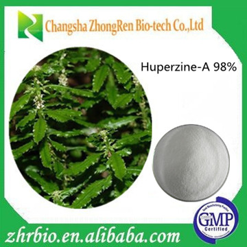 GMP Manufacturer Supply Huperzia serrata extract 98% Huperzine-A