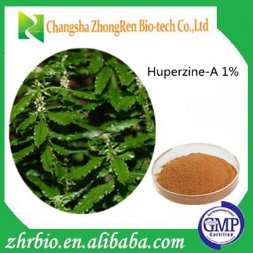 High Quality Huperzia serrata extract Huperzine-A 1%