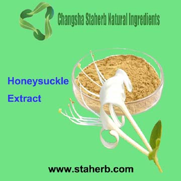 Chlorogenic Acids Honeysuckle Flower Extract Honeysuckle Extract