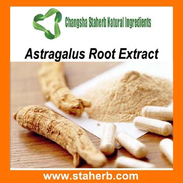 Astragalus Root Extract 10% 20% 50% 98% Astragaloside IV