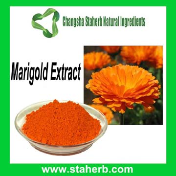 10:1 20:1 10% 20% 80% Lutein And Zeaxanthin Marigold Flower Extract Lutein