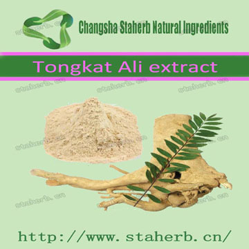 competitive Price to sell tongkat ali extract