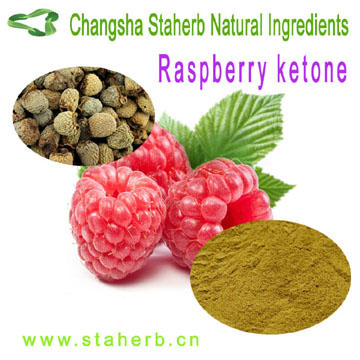 competitive Price to sell raspberry ketone extract