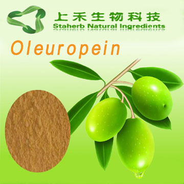 competitive Price to sell Olive Leaf Extract Oleuropein & Hydroxytyrosol