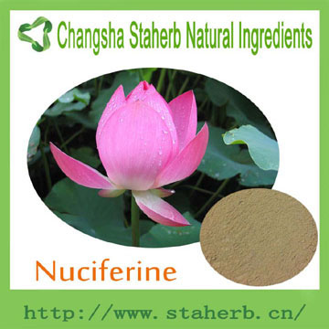 competitive Price to sell pure Natural 98% Nuciferine