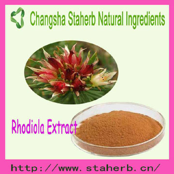 competitive Price to sell Rhodiola Rosea Extract Rosarin
