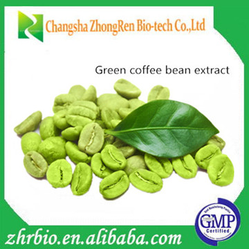 Top Sales Natural Green Coffee Bean Extract 50% total Chlorogenic acid