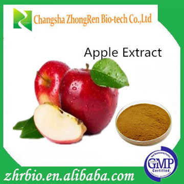 100% Natural Apple Extract,Apple Extract Powder,Apple Peel Extract Polyphenols 30%~ 80%