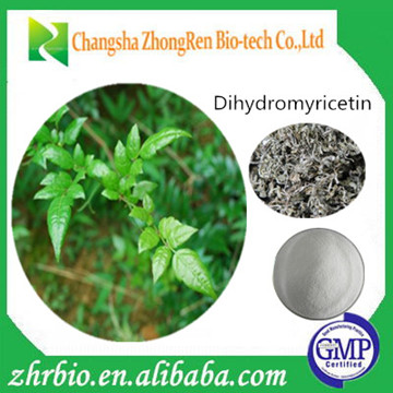 GMP Factory Supply Vine Tea Extract 50%-98% Dihydromyricetin Powder