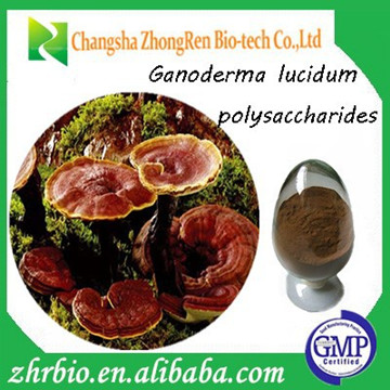2016 30% 40% Polysaccharide high quality and competitive price reishi shell-broken spore powder