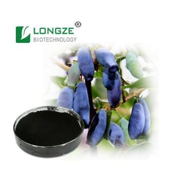 Lonicera caerulea Extract Powder