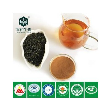 green tea extract 95%