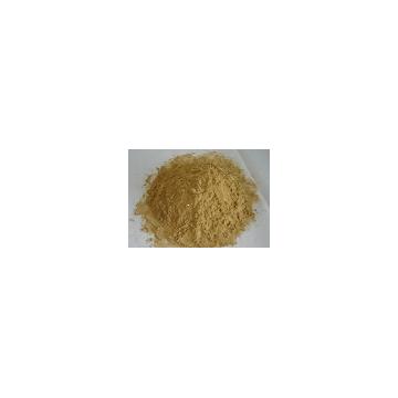 Gingko extract
