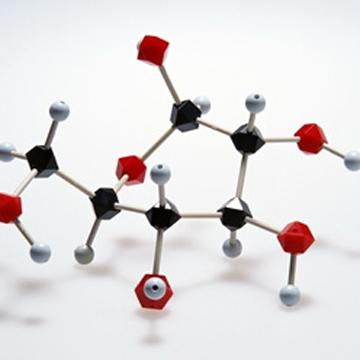 Polyacrylamide Gel