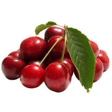 100% organic Cherry Extract Powder