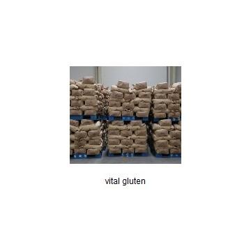 vital gluten