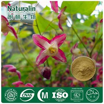 Epimedium Extract Powder