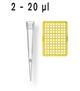 Filter Tips, 2 - 20 µl