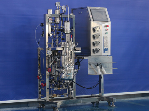 10 liter fermenter bioreactor  BLBIO-10SJA