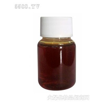 Factory supply best quality Angelica root oil