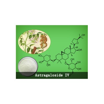 KT Astragaloside IV (98.00% above)