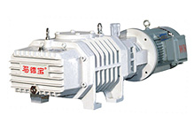 (ZJ150C) Roots Vacuum Pump