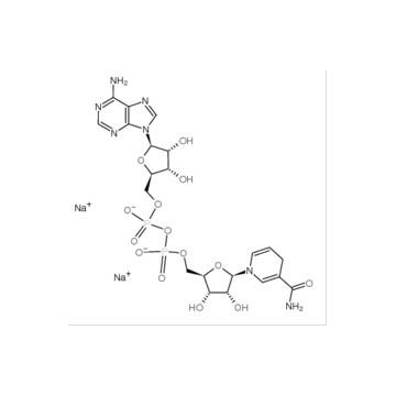 Nicotinamide adenine dinucleotide (reduced) disodium salt(NADH 2Na)