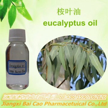 100%pure Natural Eucalyptus leaf oil bulk price