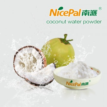 Naturals' Sports Drink --- Coconut Water Powder