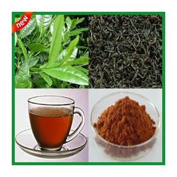 Instant Black Tea Powder  (Type I)